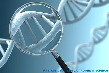 超簡単!DNA鑑定