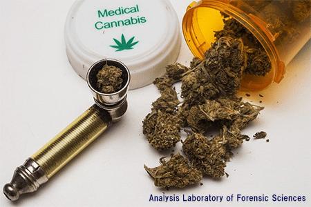 薬物乱用の実態③-大麻-カルフェンタニル