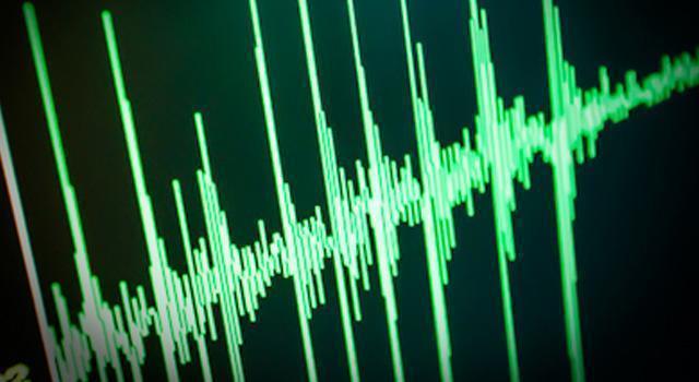 音声の個人性