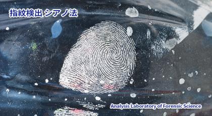 指紋検出-シアノ法
